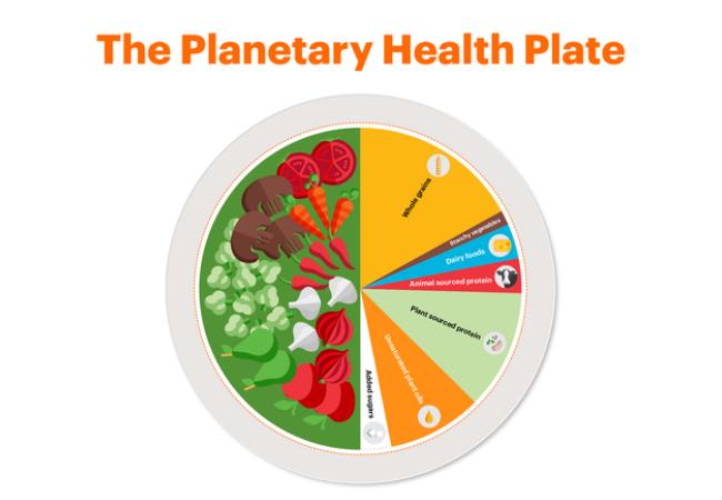 Planetaarinen-ruokavalio-toimivaa-arkiruokaa